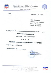 Ines' Champion Certificate