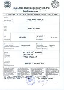 Ines' IPO1 Certificate