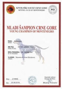 Hit Montenegro YC Title