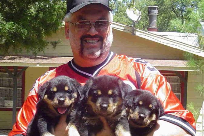 JV w 3 pups Q